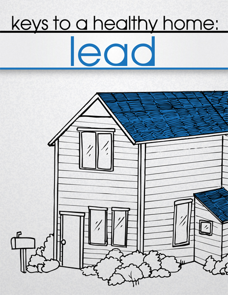 protect your family from lead in your home pdf